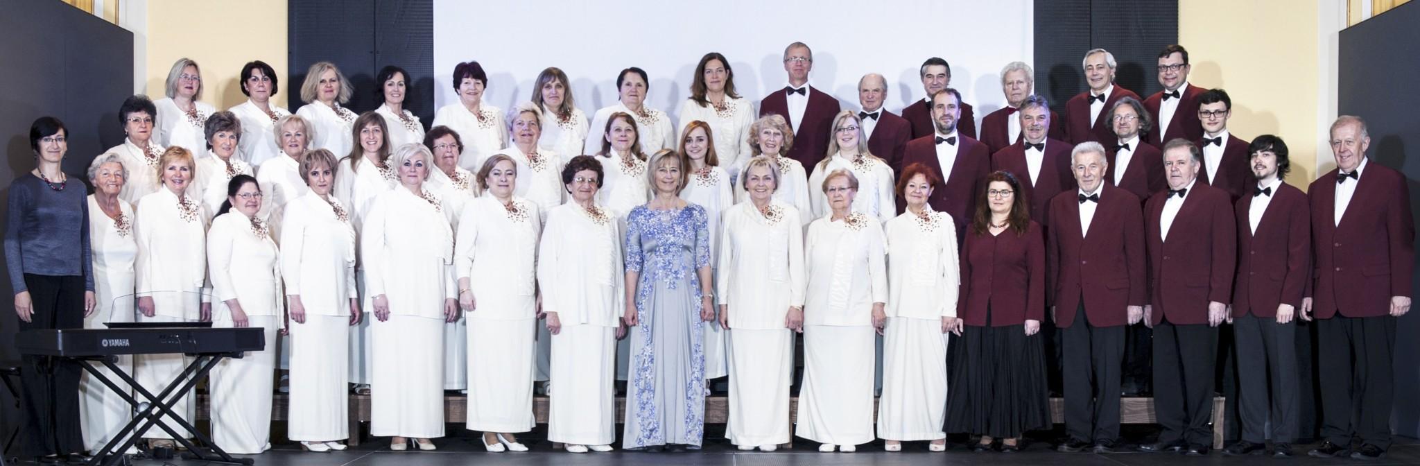 Choir Janacek a